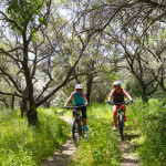 Olive Groves Beginner Ride